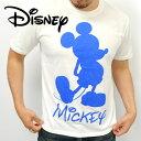 新作!Walt Disney/ディズニー 4272-0468 〜天竺素材〜 全4色!