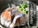 送料無料!【北三陸産】しめさば(かぶら漬け)10枚セット 小振りだから訳あり!だけれど美味しい!シメ