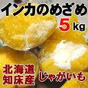 インカのめざめ 5kg 新じゃがいも 北海道産 ジャガイモ 送料無料
