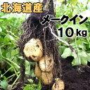 送料無料 新じゃがいも メークイン 10kg 北海道産 ジャガイモ 産地直送