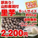 【訳有り】【送料無料】山形県産泥付き「里芋」お徳用5kg(S?Lサイズ)