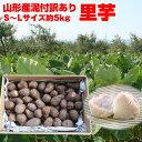 【予約】【訳有り】【送料無料】山形県産泥付き「里芋」お徳用 約5kg(S〜Lサイズ)