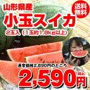 【ポイント5倍】【300円OFF】【送料無料】山形産 小玉す...