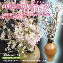 「山形県産「啓翁桜」」購入時に使える500円OFFクーポン