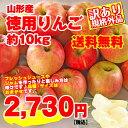 【予約】【送料無料】【訳有り】山形産徳用りんご 約10kg ...