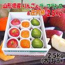 【20%861円OFF】【クーポン利用でさらに300円OFF...