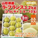 【ポイント5倍】【35%1680円OFF...