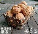 【ご家庭用】長野県東御市産 殻付きくるみ 清香 400g【訳あり】