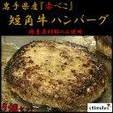 岩手県産 短角牛ハンバーグ 5個セット(120g×5個) 国...