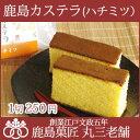 【送料別】鹿島カステラ(ハチミツ)1切サイズ【RCP】【10P09Jul16】