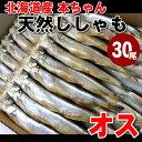 【税コミ価格】【数量限定】北海道 広尾産 本ちゃんししゃも オス 30尾入り 本ししゃも 柳葉魚 天然 本物 シシャモ【02P03Dec16】