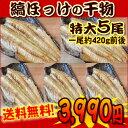 【税コミ価格】【5尾セット・送料...