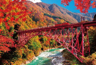 ★Truck train, 1000P jigsaw puzzle, scenery photograph, railroad photograph of colored leaves and the Kurobe gorge
