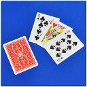 ミステリアスカード DP c5805 手品 マジック カードマジック