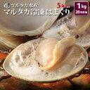 【送料無料】冷凍はまぐり 5年もの5cm〜6cmサイズ 50...