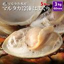 【送料無料】冷凍はまぐり5年もの5cm〜6cmサイズ 500...