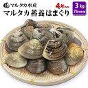 【送料無料】蓄養はまぐり 4年もの5cm〜6cmサイズ蛤(ハマグリ)3kg(75粒前後)入♯貝 はま...