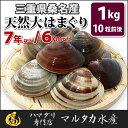 【送料無料】三重県桑名産 天然大はまぐり 7年もの以上蛤(ハマグリ)6cm以上1kg(10粒前後)入