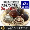 【送料無料】三重県桑名産 天然大はまぐり 7年もの以上蛤(ハマグリ)6cm以上2kg(20粒前後)入