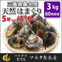 【送料無料】三重県桑名産 天然はまぐり 5年もの蛤(ハマグリ)5cm〜6cm3kg(60粒前後)入