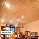 杉羽目板 無節 純白10×115×1985 13枚入り 1束壁板 建材 木材 板 日曜大工DIYに
