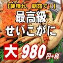 �y���h���̂���T�C�Y�ł��̂ő��蕨�ɂ҂�����ł��z���l��I��䥂ŁI�������I�ō������傹��������1�t�B