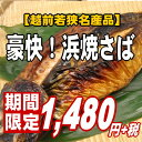 【1匹まるごと豪快焼き!】昔から伝わる福井の味♪浜焼き鯖【楽ギフ_のし】