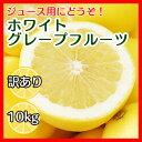 ホワイトグレープフルーツ10kg