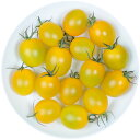 井出トマト農園謹製ミニトマト イエローアイコ