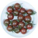 井出トマト農園謹製ミニトマト トスカーナバイオレット