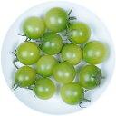 井出トマト農園謹製ミニトマト サングリーン