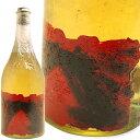 е░еще├е╤ ─╛╜ёднекб╝еые╔е▄е╚еы б┌1б█еэе▐б╝е╬бжеьеЇегGrappa(Old Bottle) Romano Levi