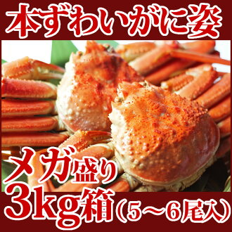 This one good crab appearance mega Prime 3 kg box (Pack of 5-6 tail) Rakuten tournament Shinjuku Isetan Yokohama Nagoya Takashimaya, Nihonbashi Mitsukoshi honten Hanshin Hakata Hankyu Department store