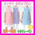『KN-765 カンサイ 女性 エプロン ナガイレーベンNAGAILEBEN KN765【白衣】医療 看護