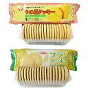 ダイエット食品 ダイエットクッキーお買い得セット!うの花クッキー1箱+ブランクッキー1箱 合計480...