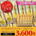 ダイエット クッキー うの花クッキー2箱セット(20枚×