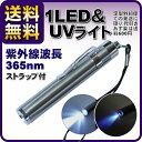定型外なら送料無料(あす楽・代引き・日時指定¥600~)【2way‐LED&UVライト】 ブラックライト05P28Sep16 10P01Oct16