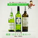 【世界ワイン紀行シリーズ】スペイン編 厳選! 《白》ワイン3本セット 【送料無料】