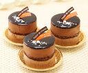 リッチな味わい♪チョコケーキ『とろける生ショコラ』3個入チョコレートケーキ クーベルチュール