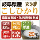 【ふるさと納税】飛騨牛サーロインステーキ(サーロイン680g)