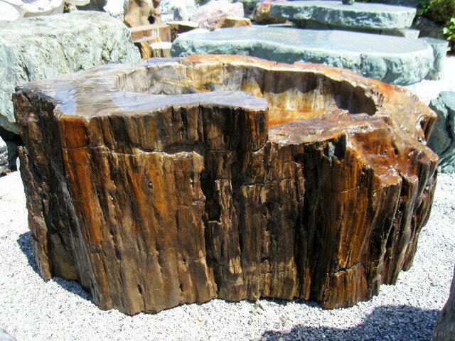 木化石 つくばい 049庭石 珪化木 水鉢