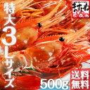 [特大3Lサイズ厳選]最高級ボタンエビ500g[送料無料]【...