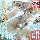 世界最高の称号を与えられた[天使の海老]1kg(21-30匹)[送料無料](えび/エビ/海老)[海鮮