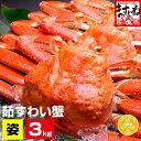 年末受付開始 1,000円OFFクーポン有【メガ盛り3kg】...