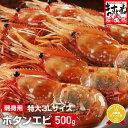 [特大3Lサイズ厳選]最高級ボタンエビ500g【送料無料】【...