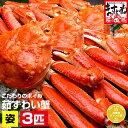 母の日 父の日 早割クーポンで9999円送料無料!【特大1尾...