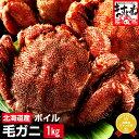 [北海道産/茹で毛蟹大サイズ500g前後×2匹(計1kg)セ...