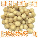 【訳あり品】【B級品】素焼きマカダミアナッツ【1Kg】【オーストラリア産】【抗酸化物質 脂質 たんぱ