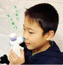 即発送!鼻洗浄器 鼻キレイ 鼻炎鼻きれい◆送料無料◆インフルエンザ予防に