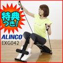特価 3特典【送料無料+お米+楽P】 アルインコ マルチコンパクトジム EXG042 ALINCO ...